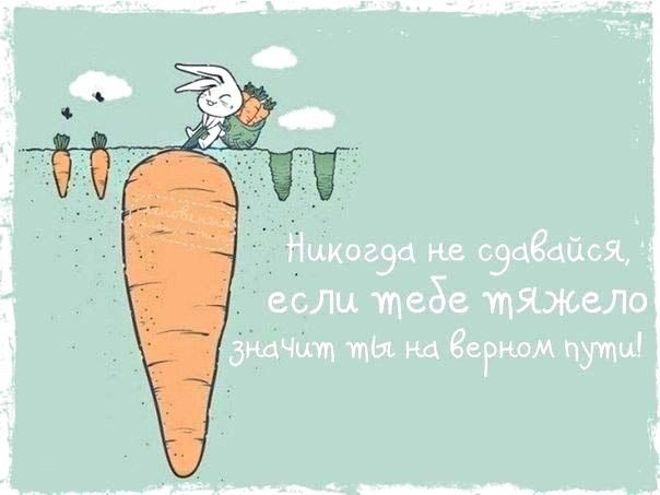 -_R_IK4Zhbs